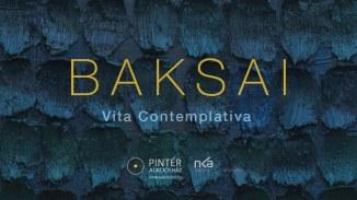 Baksai_katalógus