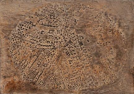 Bátai Sándor Afrika II. 2009