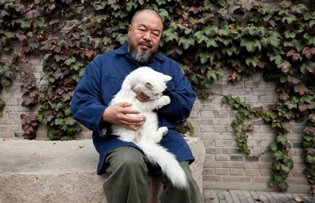 Ai Weiwei and his cat Lai Lai