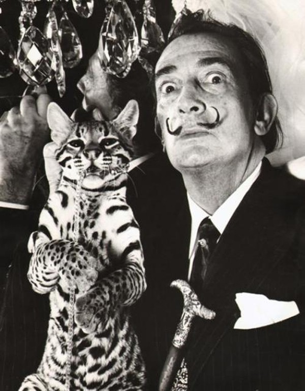 dali-and-ocelot-wild-cat