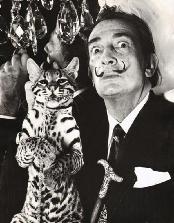 dali-and-ocelot-wild-cat