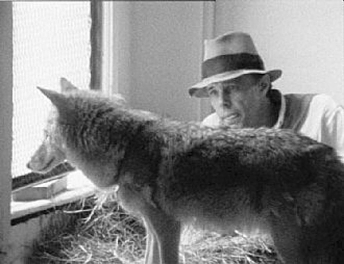 joseph-beuys- I like-america-and-america-likes-me performance-1974