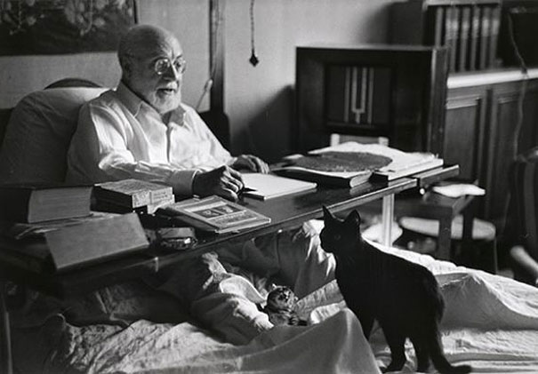 Matisse with his cat