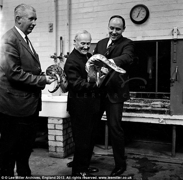 unknown-joan-miro-desmond-morris-and-snake-london-zoo-england-1964-by-lee-miller
