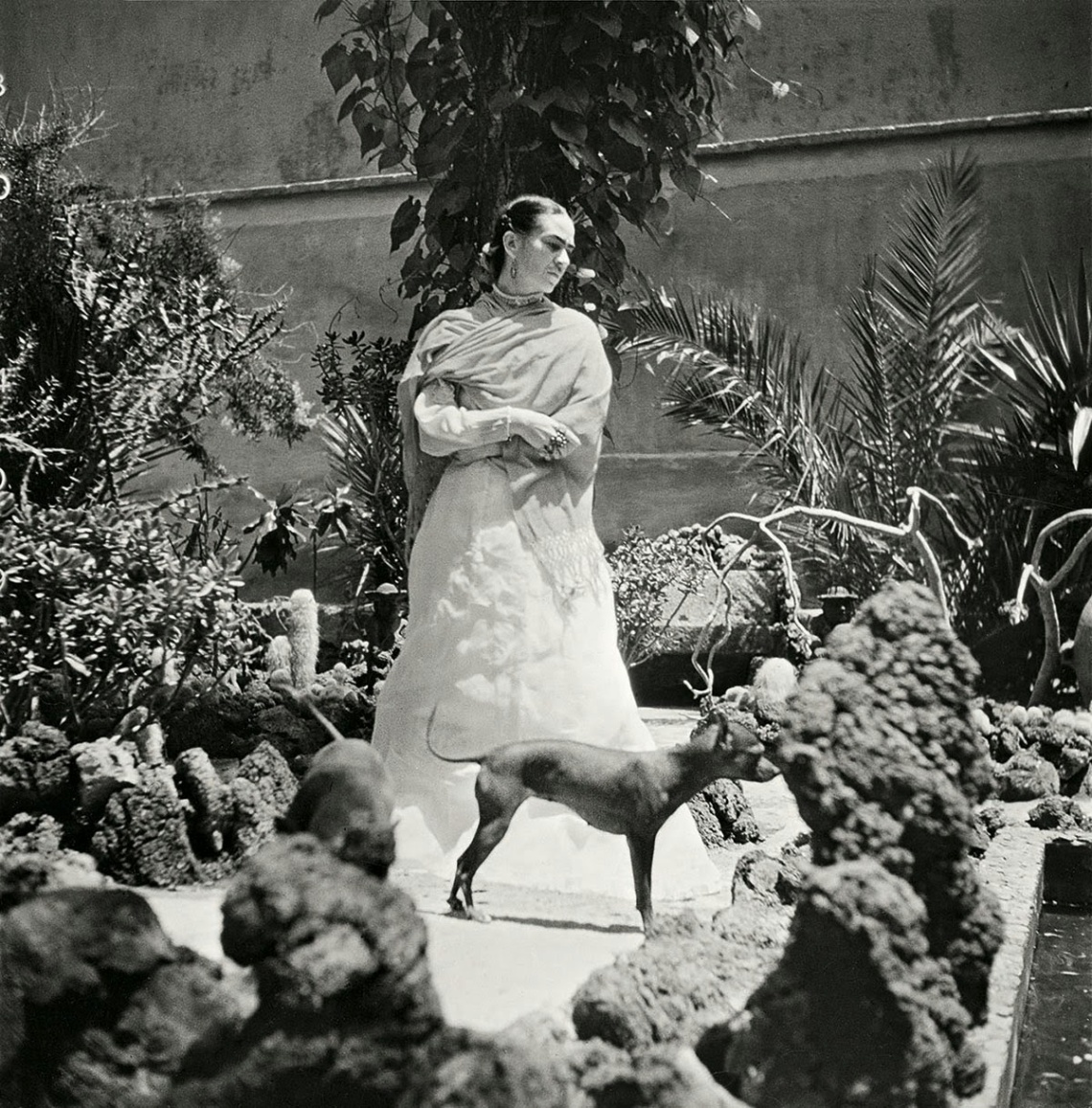 Frida Kahlo in her garden, 1951 — Photo Gisèle Freund