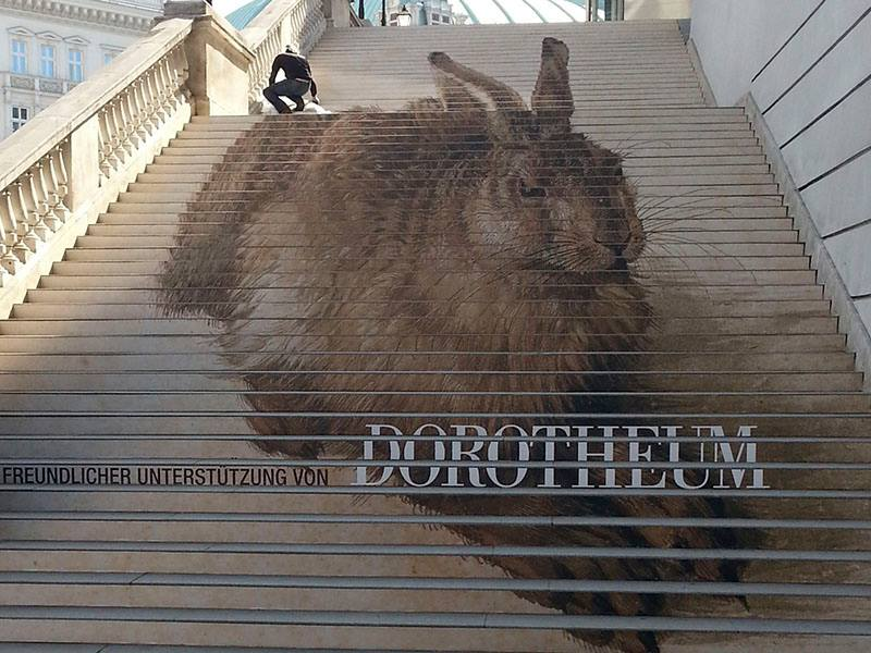Dürer's Young Hare at stars of Albertina Museum, Vienna