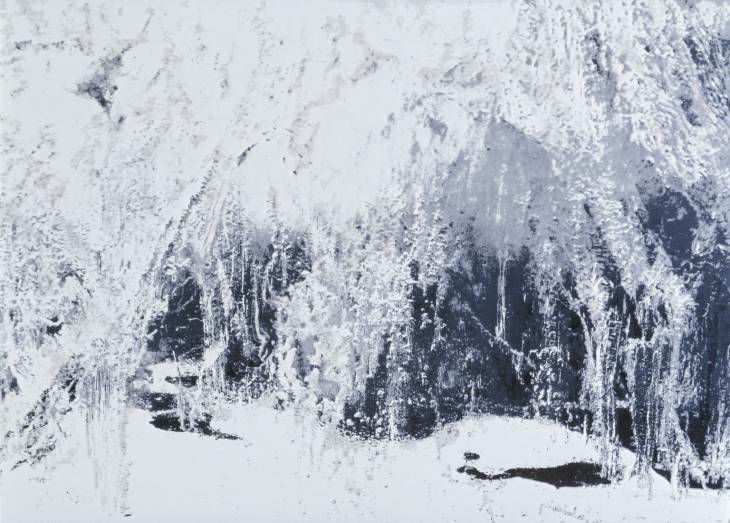 Anya Gallaccio (British, born 1963)_White Ice 2002