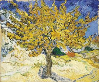 Vincent Van Gogh (Dutch, 1853–1890)_The Mulberry Tree 1889.jpg